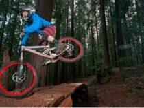Freeride, Downhill Kerékpár