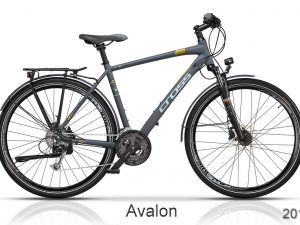 CROSS Avalon – 2017