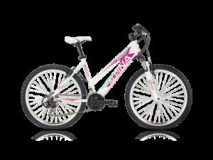 ALPINA Eco LM10 – 2018